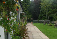 Paddocks Cottages offer dog friendly self catering holiday cottages in Symonds Yat in the Wye Valley